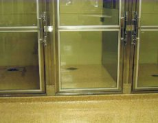 Kennel Chip System and Wall Coating